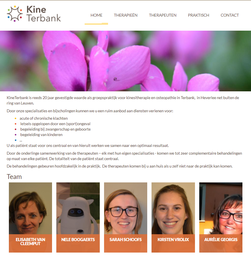 Screenshot website Kine Terbank
